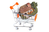 Model of house in the shopping cart isolated on white