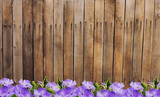 Old wooden fence and flowers.