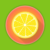 Citrus fruit lemon icon