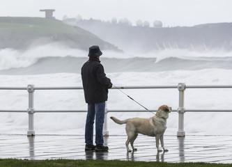 Hombre con perro frente al mar