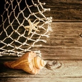 Nautical background with a shell and starfish