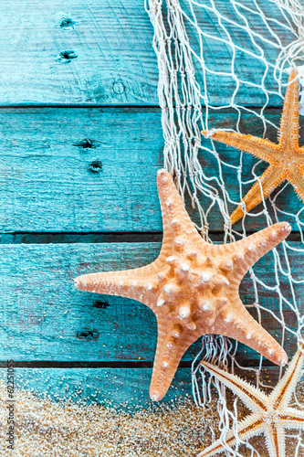 Spiny starfish on turquoise painted boards