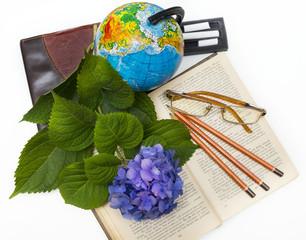Flower hydrangea and school subjects.