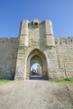 Medieval door, Aigues Mortes, southern France.