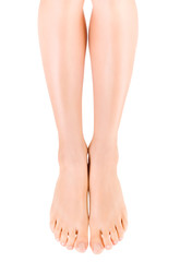 Female slender beautiful legs