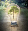 Small tree inside a bulb -