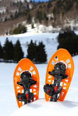 two snowshoes for walking on the soft snow