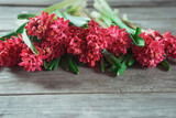 Bouquet of red hyacinths on a wooden table