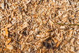 Closeup of a heap of small wooden pieces after shredding trees
