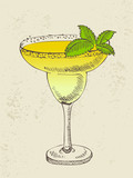 Hand drawn illustration of tropical yellow cocktail with mint.
