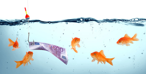 goldfish in danger - euro as bait - concept deception