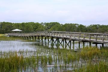 Boardwalk over Marshland