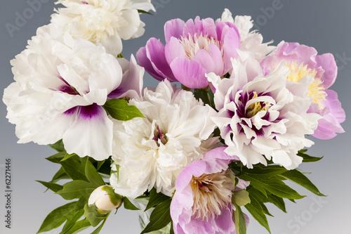 piwonia-bukiet-kwiatow