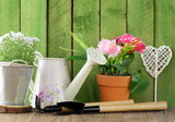rustic still life watering can, flowers in pots, garden tools