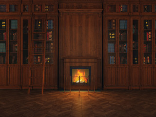 libraries around the fireplace