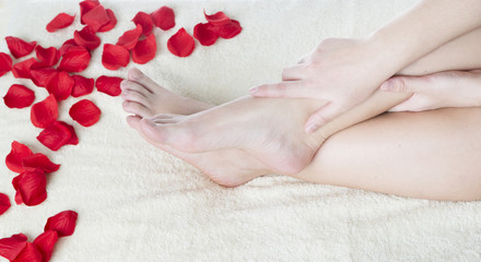 Beautiful female feet and rose petals.