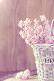 Hyacinth in basket