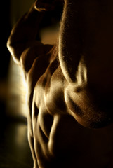 Muscular shoulders and back.