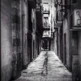 Born in Barcelona, Spain - 62280474