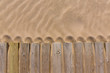 pine wood deck weathered in beach sand texture