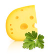 Piece of cheese with holes and parsley herb isolated on white