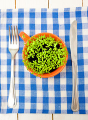 Sprouts of cress in an orange cup, fork and knife