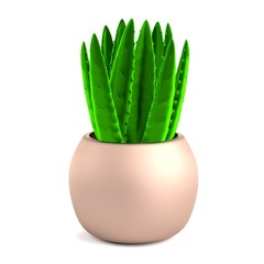 realistic 3d render of aloe