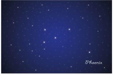 Constellation Phoenix