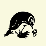 Ridiculous  silly vector penguin found a flower