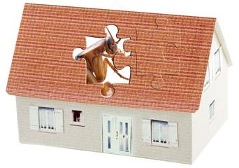 concept désinsectisation des maisons