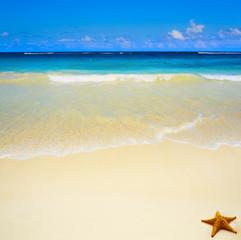 Art beautiful untouched tropical sea beach