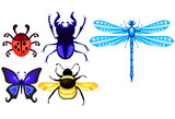 stag-beetle; dragonfly; ladybug; butterfly and bumblebee set