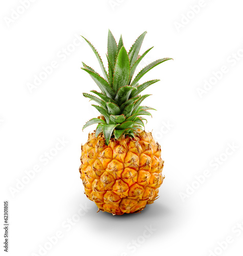 Young Pineapple - isolated