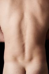 Human anatomy series: os sacrum