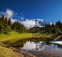 fototapeta góra Rainier