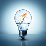 energy change concept - goldfish jumping into a light bulb - up