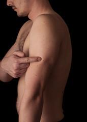 Human anatomy series: humerus