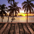 Sunset and palm trees, The Philippines