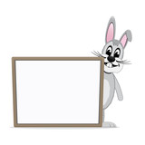 gray bunny look behind board isolated background