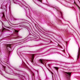 Cross Section purple cabbage