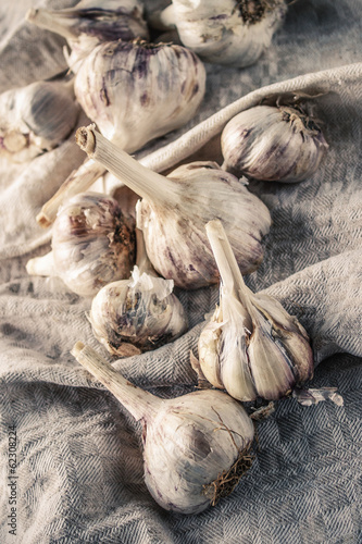 Different size garlic on a linen cloth