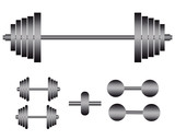 barbells and dumbbells for exercise