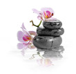 Zen stones and orchid with reflection in water.