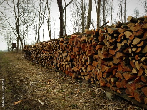 Holzstoss