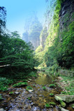 golden whip brook in zhangjiajie national forest park