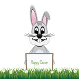 gray bunny behind board isolated background