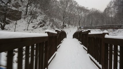 Snowy Korean Mountains Glide Cam
