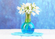 Beautiful snowdrops in vase,