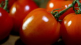 red tomatoes. Slider  macro shot