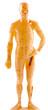 statuette mannequin médecine chinoise
